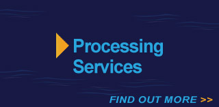 services-processing-services